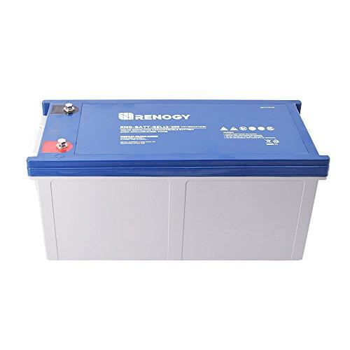 Renogy Deep Cycle Pure 2 Gel Battery 12V...