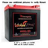 Renegade RG30L-WS 12 Volt 30 AH Ultra Premium...