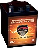 VMAXTANKS 6 Volt 225Ah AGM Battery: High...