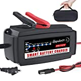 LST 12V 5A Automatic Battery Charger...