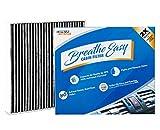Spearhead Premium Breathe Easy Cabin Filter,...