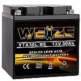 Weize YTX30L-BS Battery Replacement Yuasa...