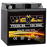 Weize YTX30L-BS Battery Replacement Yuasa...