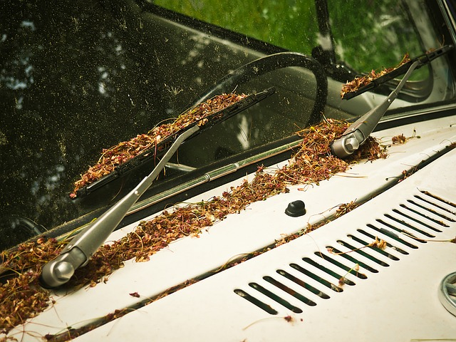 How To Fix Windshield Wipers That Stopped Worked